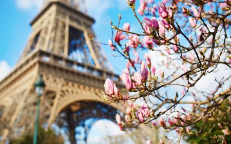 5 яскравих подій «Французької весни» на 10-17 квітня 2019