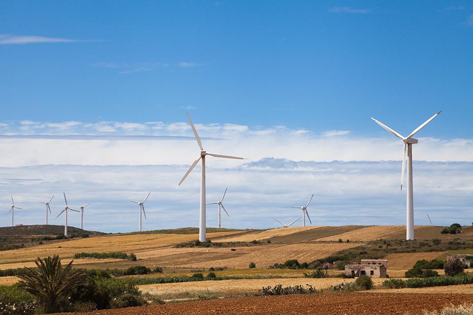 вітряки у тунісі