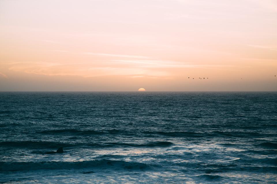 море, закат, небо, птицы