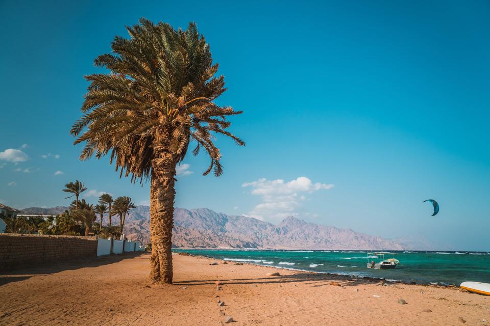 Пальма, пляж, лодка, парашют, море, дахаб, египет