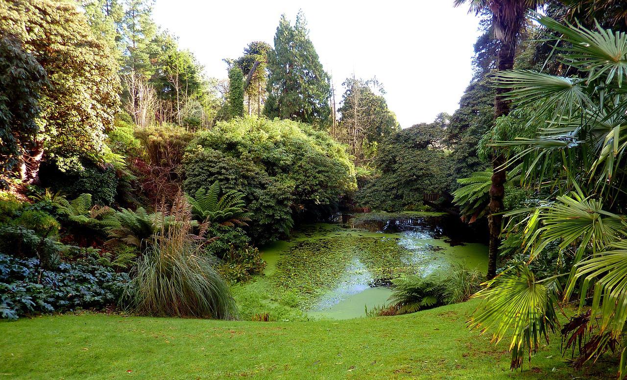 Загублені сади Хелігана, Корнуол, Англія