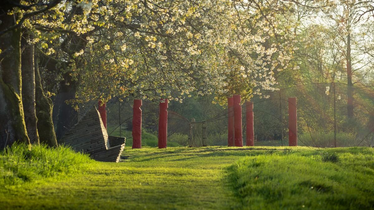 Загублені сади Хелігана Корнуол Англія