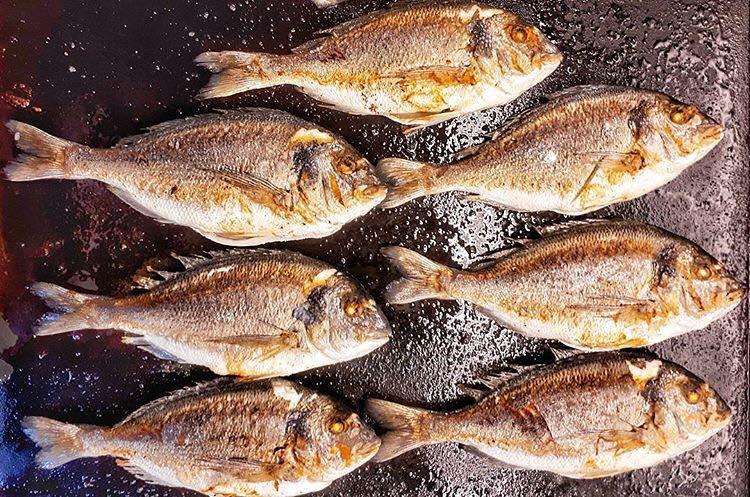 жарена риба