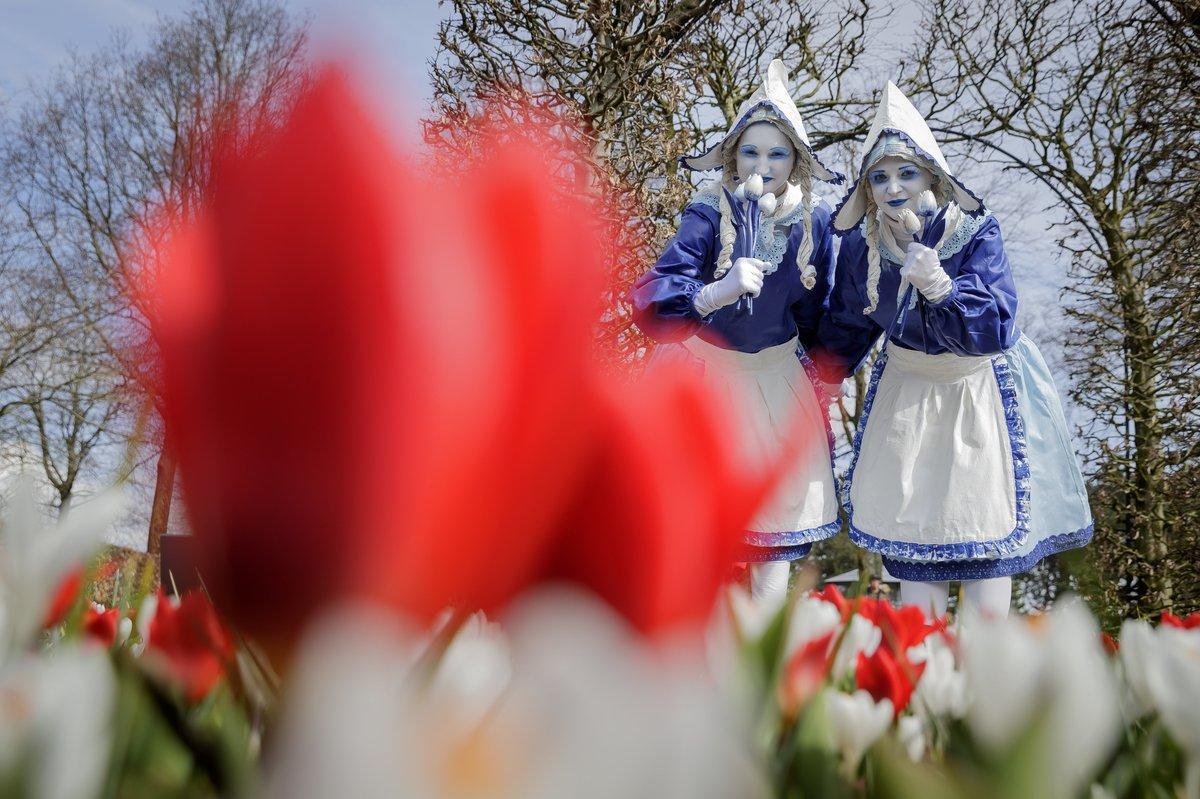 Фестиваль тюльпанів у Національному парку квітів Кекенхоф