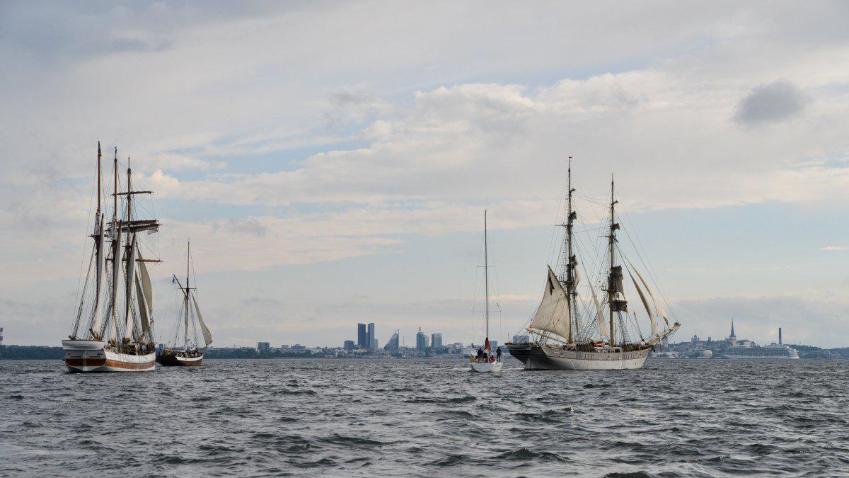 таллін дні моря подія порт